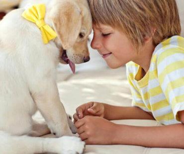 «Mαμά, να πάρουμε σκυλάκι;»